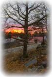 CampingSpring Tjärnö, Sweden