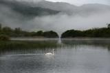 Misty Elter Water Dawn  12_d800_2082