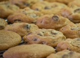 P3300009 Hell's Geezers Chocolate Chip Cookies