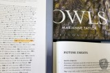 Owl Published