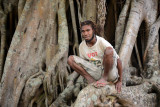 Tanna man up on a banyan tree