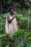 The guide explains some of the native crops
