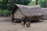 Raised hut, Louinio Nambas Kastom Village