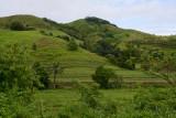 Lush green interior of Viti Levu