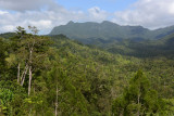 The interior of Viti Levu is mostly rugged mountains and jungle