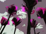 flowers 12x9