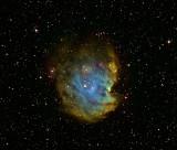 NGC 2175, Monkey Head Nebula