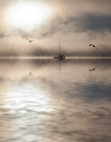 Yacht in mist with two gulls