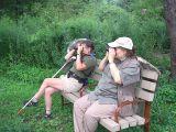 Birding the easy way