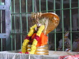 Acharya Vallal.JPG