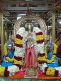 Sri Mukuntha Nayagan ( thiruvelukkai ) Vaikunda Ekadasi Uthsavam
