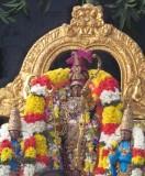 Perumal Kovil Anushtanakula Uthsavam