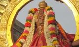 Sri Perarulalan Radha Sapthami Uthsavam - Soorya Prabhai - Nandhana
