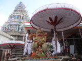 neervannar_utsavam_simha_vahanam_2nd_day_mrnng