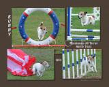 Morgan 8x Bunny montage.jpg
