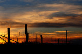Sunset with Barbed Wire Fence