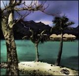 French Polynesian Crab in Moonlight
