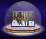 Snowglobe 2.jpg