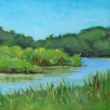 Pickerington Pond