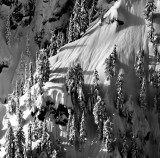 life on the ridge, Mt Garfield, Cascade Mountains, Washington