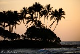 tropical location, Pauoa Bay, Big Island, Hawaii