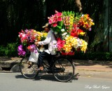 flowers delivery on bike, Saigon, Vietnam