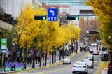 Korea in Autumn [Nov.2012]