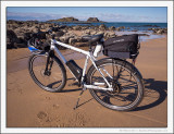 The Storck Goes to the Beach