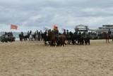 Strand 2012 (1337).JPG