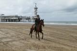 Strand 2012 (1498).JPG