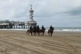 Strand 2012 (1501).JPG