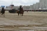 Strand 2012 (1742).JPG