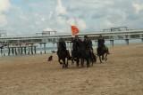Strand 2011 872.jpg
