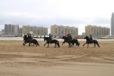 Strand 2010 db (267).JPG