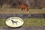 Hope Springs Farm at Marsh Creek