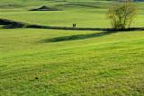 German Landscapes