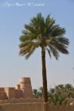 Al-Buraimi Oasis