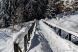 Holzji-Trail