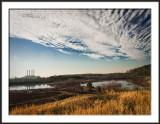 Steam Plant Landscape