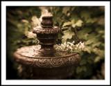 Morning Fountain