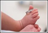 Bebê passo a passo