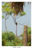 Caloosahatchee regional Park