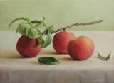 31. Ripened Peaches 12 x 16