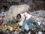 En Colombia muchos gracias a la basura sobreviven