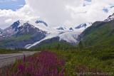 40d-8066 -  Worthington Glacier