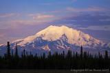 40d-8598 - Mt McKinley at 9:30pm