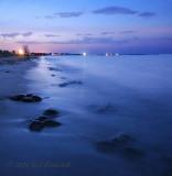 Slaughter Beach, Delaware Horseshoe Crab Spawn