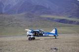 Coyote Air Beaver N5343G