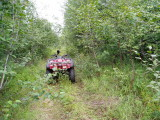 4-wheeler in the bush