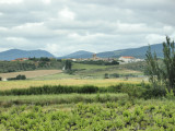 The Camino de Santiago